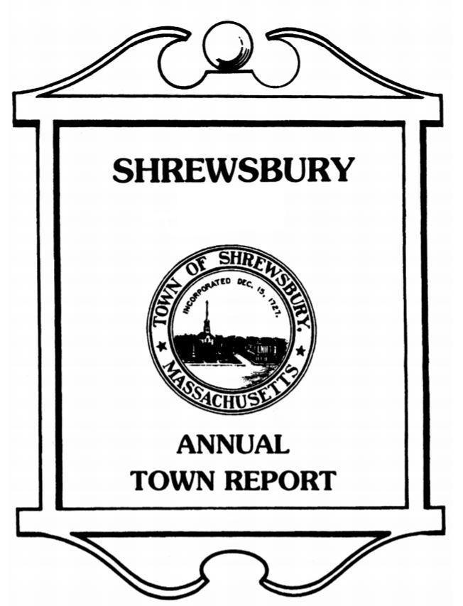 Town Report