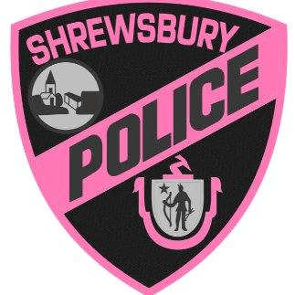 Pink Patch Project Image