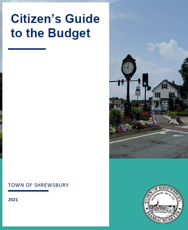 Citizens Guide to the Budget Cover Image